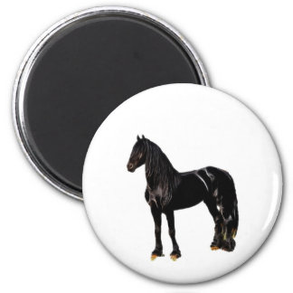 Champion horse magnet