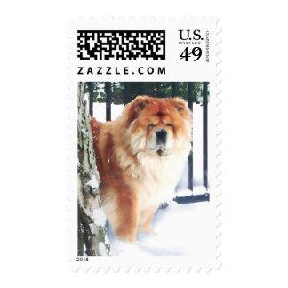 CHANCE heARTdog chow Postage Stamp
