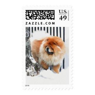CHANCE heARTdog chow Stamp