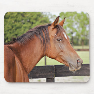 Chance Mouse Pad
