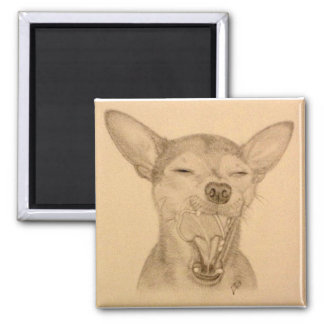 Chance the Chihuahua Magnet ~ Puppy Yawn