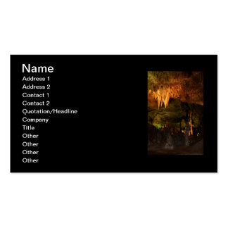 Chandelier Double-Sided Standard Business Cards (Pack Of 100)
