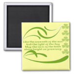 Change background color-Irish Blessing 2 Inch Square Magnet