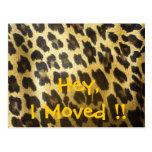 Change of Address Leopard Print Postcard