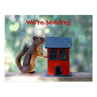 Change of Address Moving Announcement Squirrel Postcard