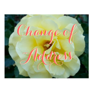 Change of address postcard with rose flower photo