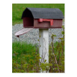 Change of Address Rural Country Mailbox Postcard