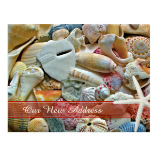 Change of Address Tropical Beach Shells Postcard