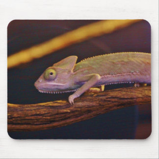 Changing Chameleon Mouse Pad