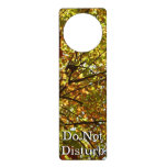 Changing Maple Tree Green and Gold Autumn Door Hanger