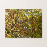 Changing Maple Tree Green and Gold Autumn Jigsaw Puzzle