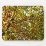 Changing Maple Tree Green and Gold Autumn Mouse Pad
