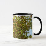 Changing Maple Tree Green and Gold Autumn Mug