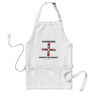 Changing Moment To Moment (Magnetism Humor) Adult Apron