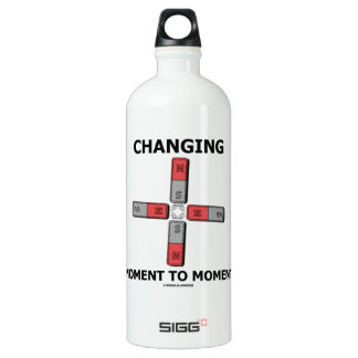 Changing Moment To Moment (Magnetism Humor) Aluminum Water Bottle