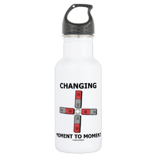 Changing Moment To Moment (Magnetism Humor) Water Bottle