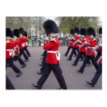 Changing of the Guards--Woodwinds Postcard