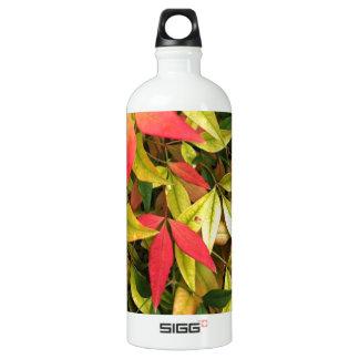 Changing Seasons Aluminum Water Bottle