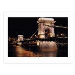 Chani Bridge at night Post Card