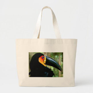 Channel-billed Toucan. Bag