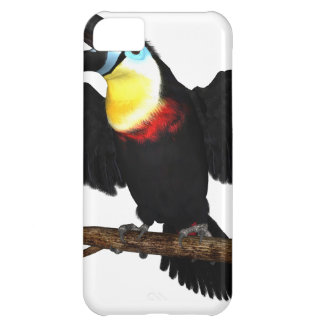 Channel-Billed Toucan iPhone 5C Cover