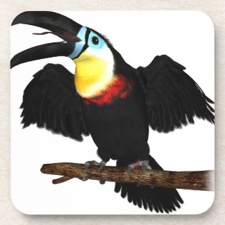Channel-Billed Toucan Coasters