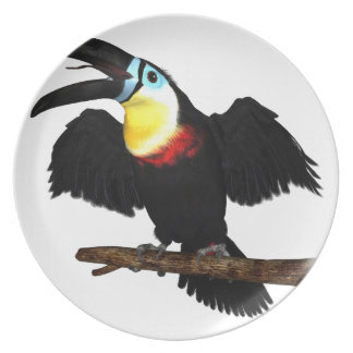 Channel-Billed Toucan Dinner Plate