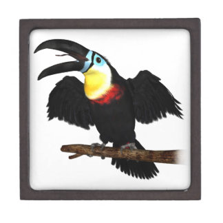Channel-Billed Toucan Premium Jewelry Boxes