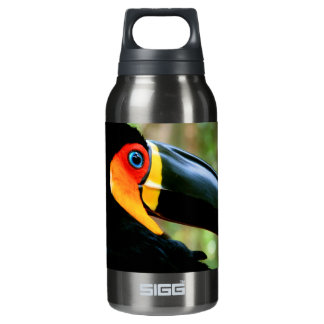 Channel-billed Toucan. SIGG Thermo 0.3L Insulated Bottle