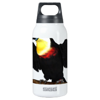Channel-Billed Toucan SIGG Thermo 0.3L Insulated Bottle