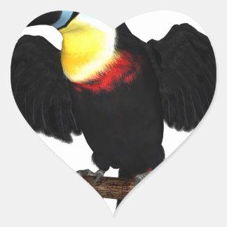 Channel-Billed Toucan Heart Sticker