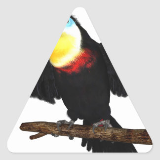 Channel-Billed Toucan Stickers