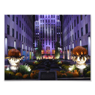 Channel Gardens Fifth Avenue New York City NYC Photo Print