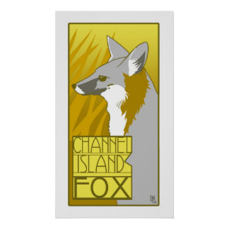 Channel Island Fox Posters