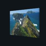 """Channel Islands National Park, Southern Canvas Print<br><div class=""""desc"""">AssetID: 117040859 / Edwin Beckenbach / Channel Islands National Park,  Southern California Coast.</div>"""