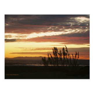 Channel Islands Sunset Post Card