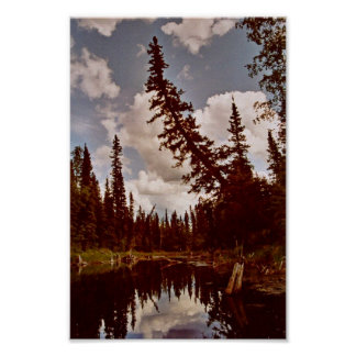 Channel to Oxbow Lake Poster