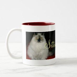 Chantal el gato que sienta la taza bonita