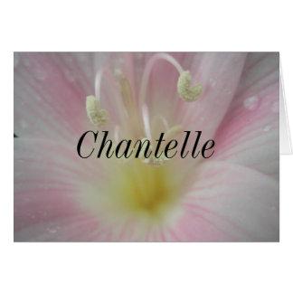 Chantelle Tarjeta De Felicitación