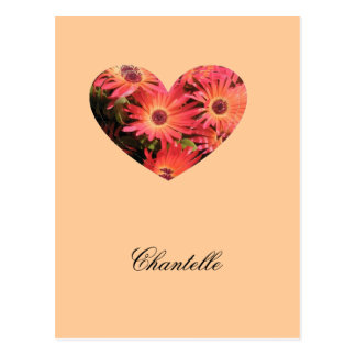 Chantelle Tarjetas Postales