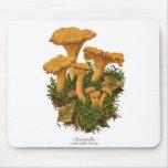 Chanterelle Mushroom Mousepad