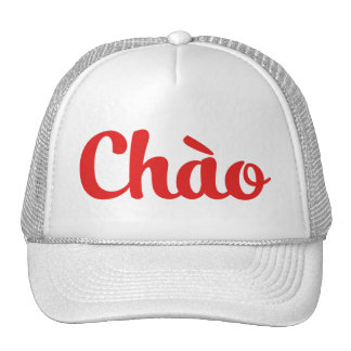 Chào / Hello ~ Vietnam / Vietnamese / Tiếng Việt Trucker Hat