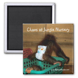 Chaos at Jungle Nursery 2 Inch Square Magnet