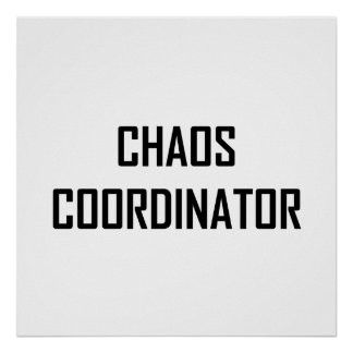 Chaos Coordinator Poster