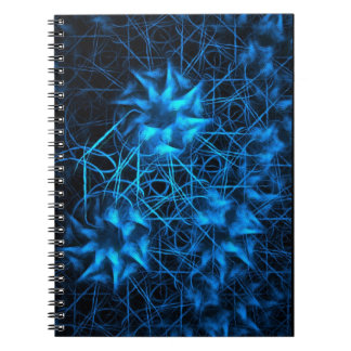 Chaos Theory Fractal Spiral Note Books