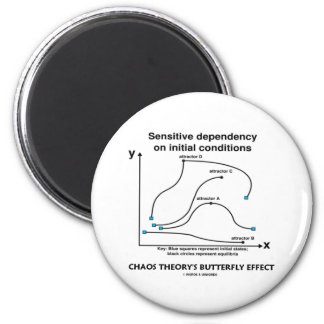 Chaos Theory's Butterfly Effect Magnet