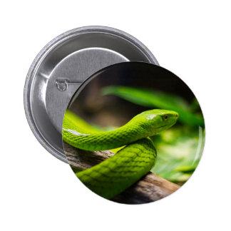Chapa con serpiente, Snake pin