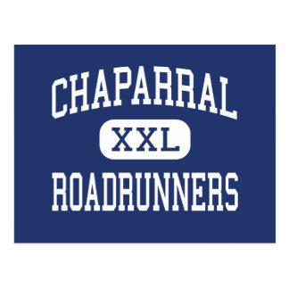 Chaparral - Roadrunners - High - Anthony Kansas Postcard