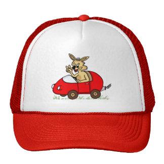 chapeau drôle lapin casquette de camionneur