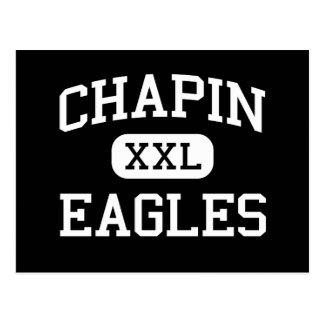 Chapin - Eagles - High - Chapin South Carolina Postcard